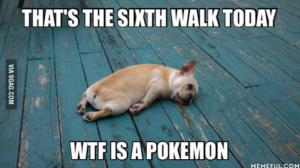 pokemon_joke_8